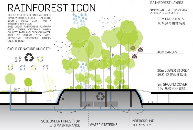 Forest City  U00bb Lava